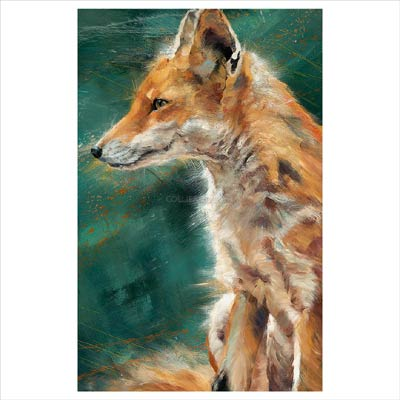 foxy lady co uk: