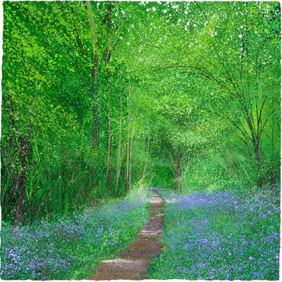 Bluebell Way by Paul Evans