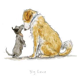 Big Love by Anita Jeram