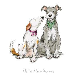 Hello Handsome by Anita Jeram