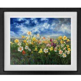 Spring Studio Edition by Kimberley Harris