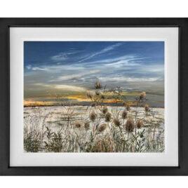 Winter Edition by Kimberley Harris